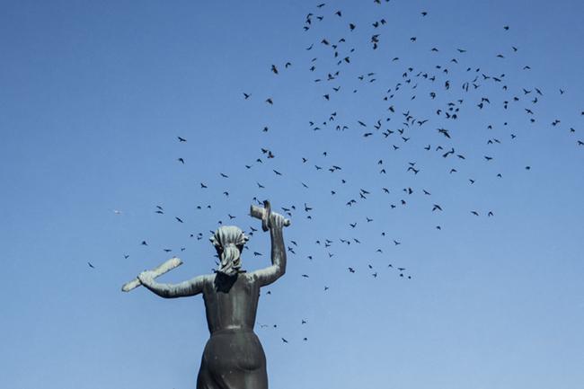 fredric nord photography phosmag statue birds