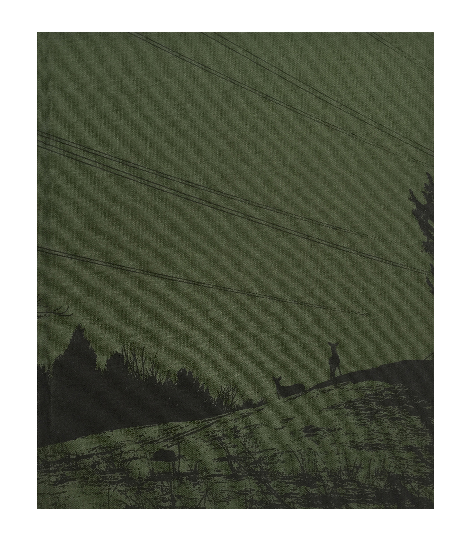 jo schryer photobooks photography phosmag landscape
